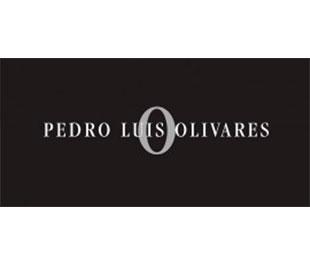 pedro-luis-olivares-logo
